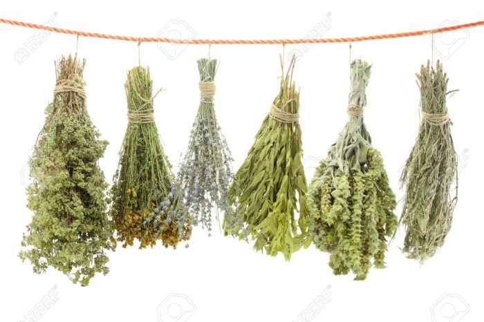 15545265-Variety-of-dried-herbs-hanging-on-a-rope-Stock-Photo.jpg