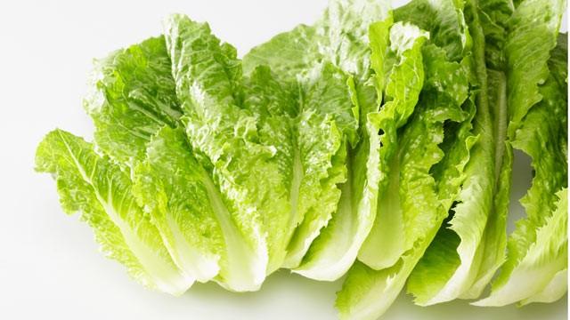 gty_romaine_lettuce_recall_thg_110929_wg.jpg